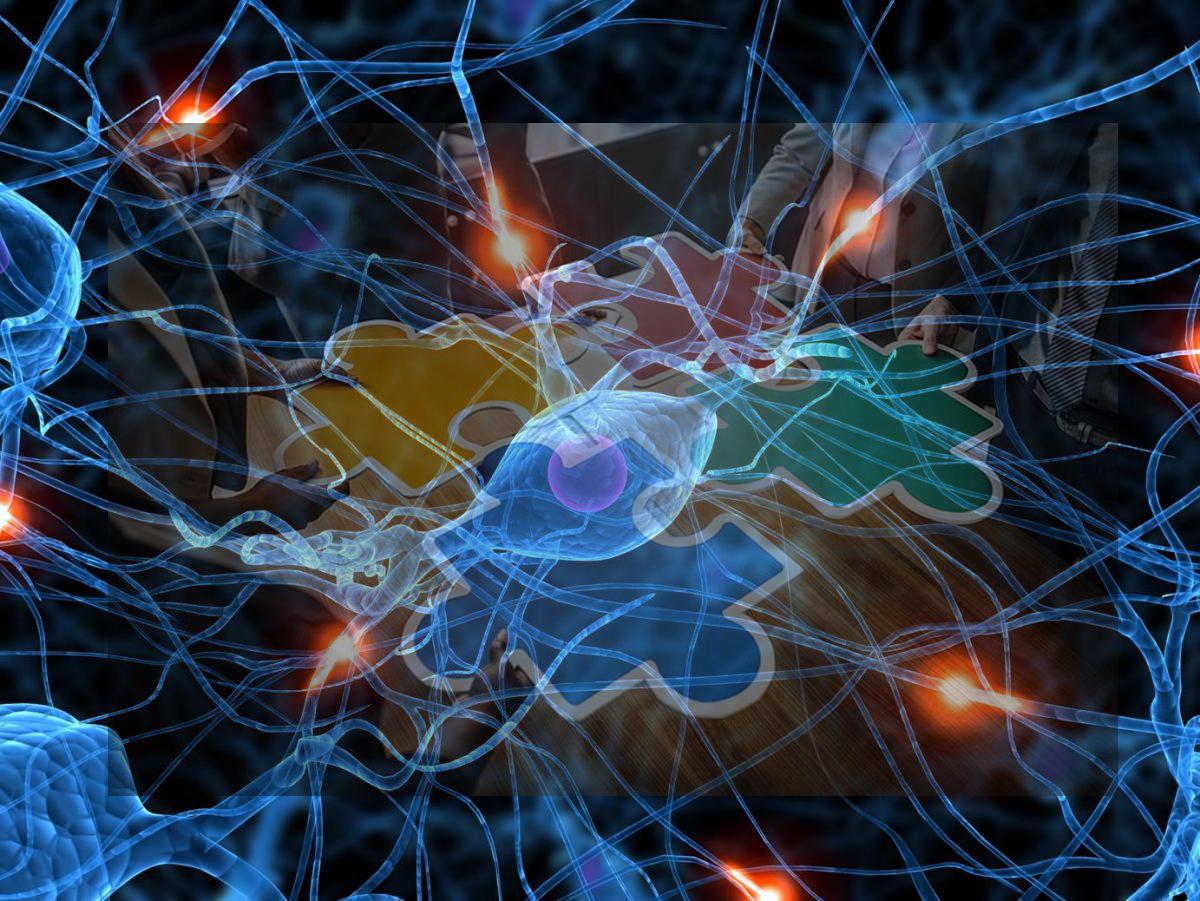 Neuron jigsaw pattern